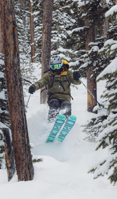 person-skiing-between-trees-3680085